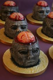 monkey-brains1